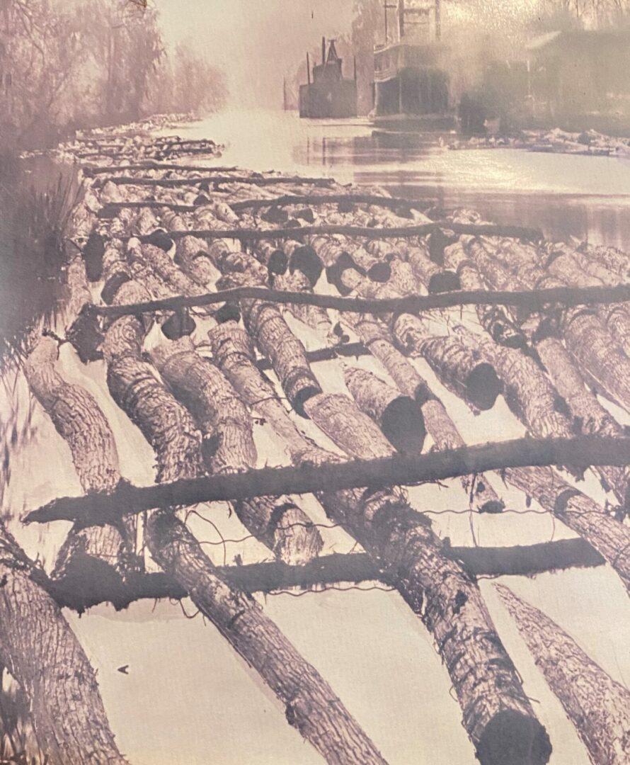 logs in float